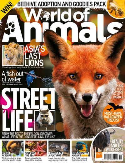 WORLD OF ANIMALS - (13 ISSUES) $185.00